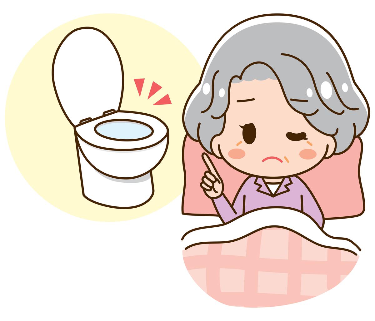 トイレを使った排泄介護の注意点と方法