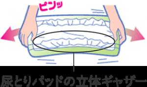 type_pct51