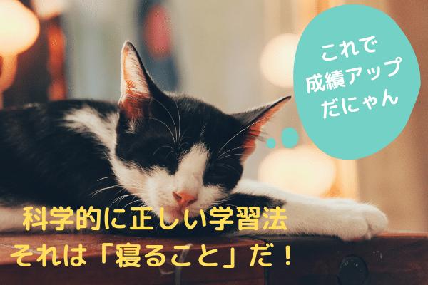 睡眠が学習と勉強の効果を高める