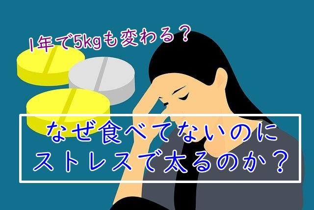 なぜストレスで太るのか?1年で「5㎏」増える理由を解説!