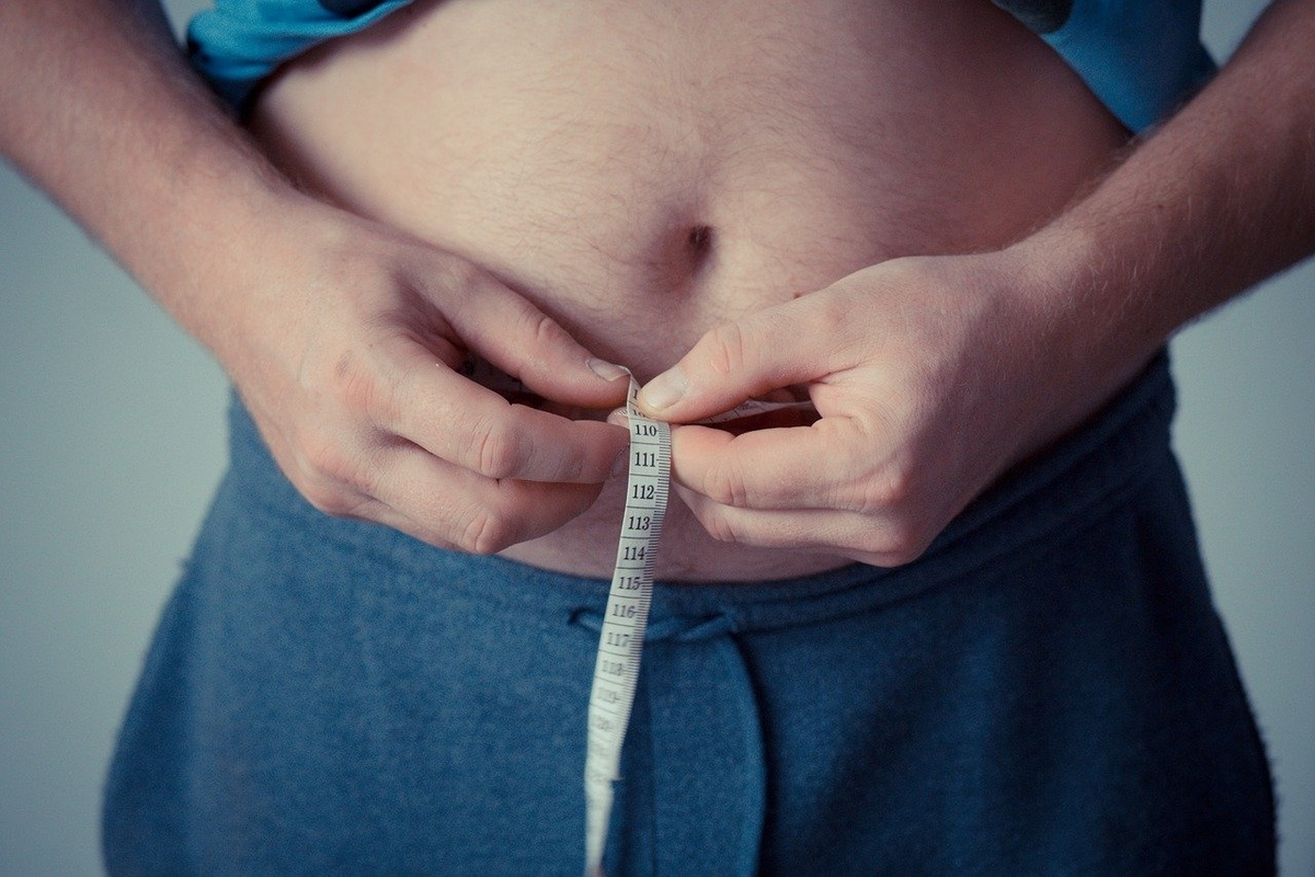 あなたのお腹の脂肪は「インスリン感受性」がつけている!