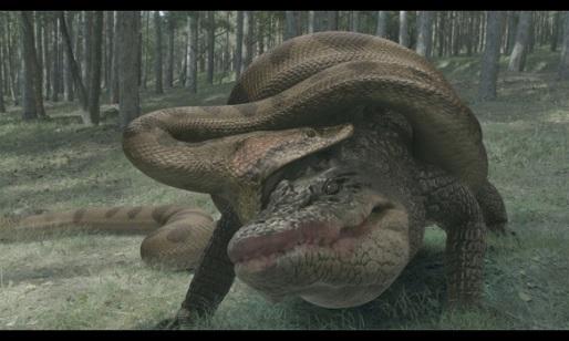 アナコンダ 巨大 【衝撃】地上に実在する世界の超巨大生物20選