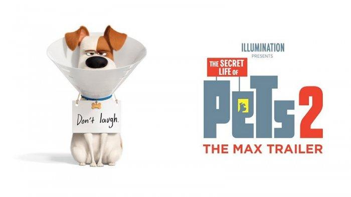 The Secret Life Of Pets 2 Full Movie Download Seemovies S Diary