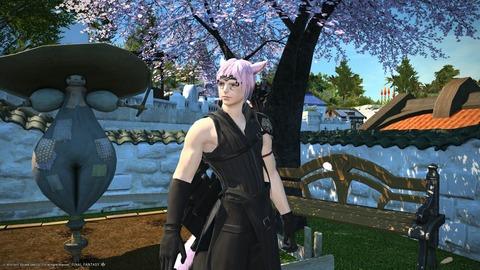 Anyu Gardener 2015_06_30 20_04_20