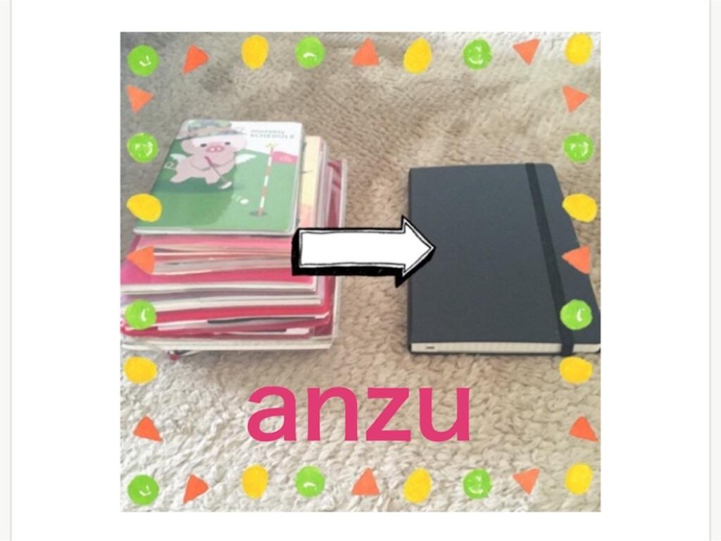 f:id:anzu_apricot:20170403122605j:image