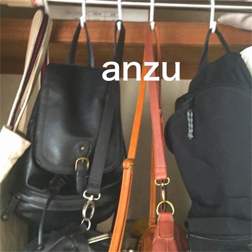 f:id:anzu_apricot:20170724172002j:image