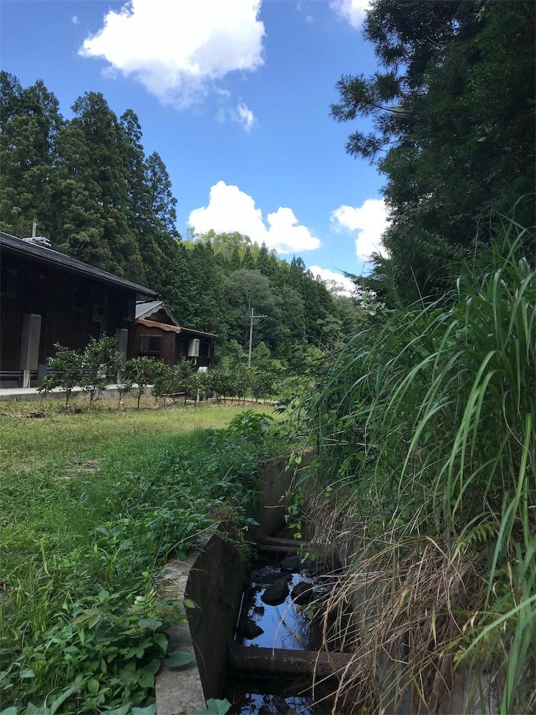 f:id:anzuruyori-umugayasushi421:20180731131920j:image