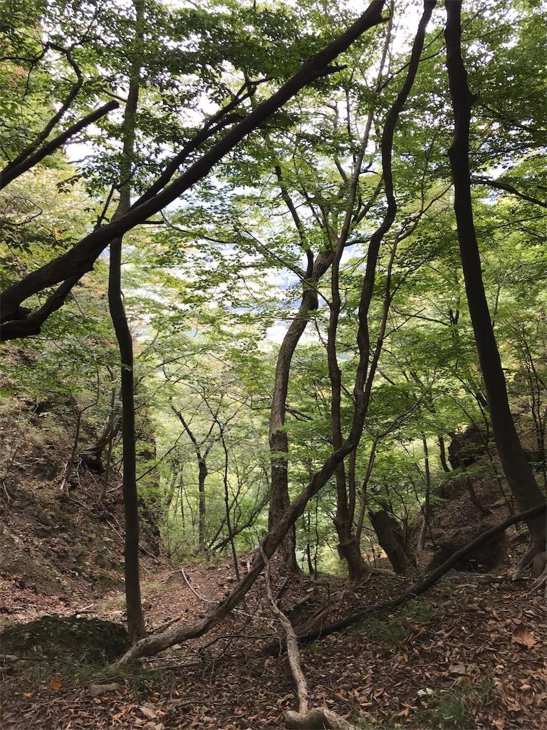 f:id:anzuruyori-umugayasushi421:20181008094250j:image