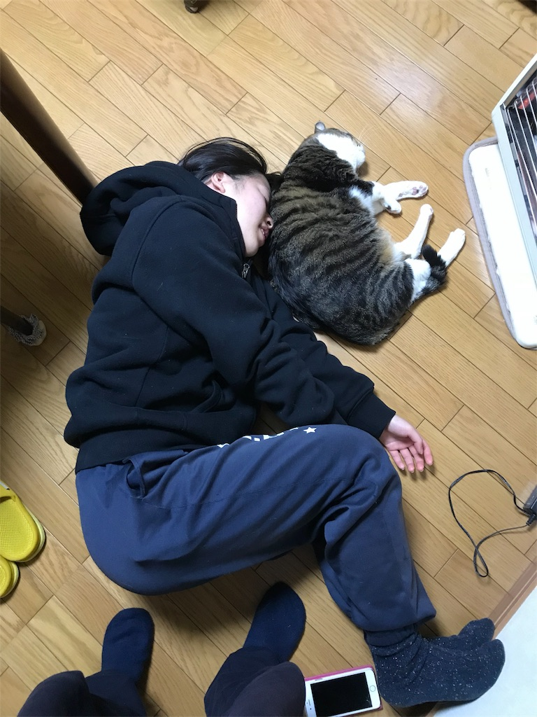 f:id:anzuruyori-umugayasushi421:20181206152513j:image
