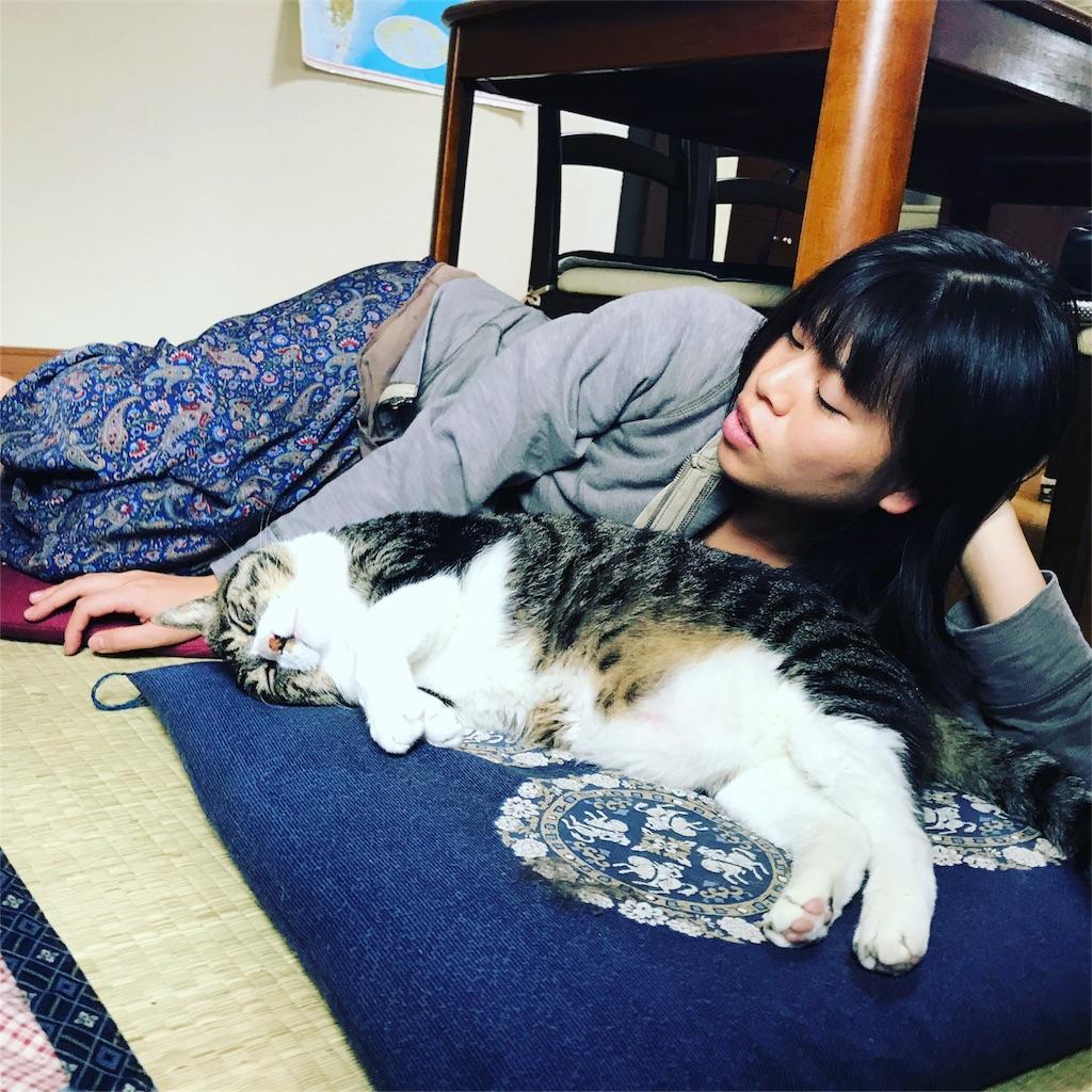 f:id:anzuruyori-umugayasushi421:20181206152920j:image