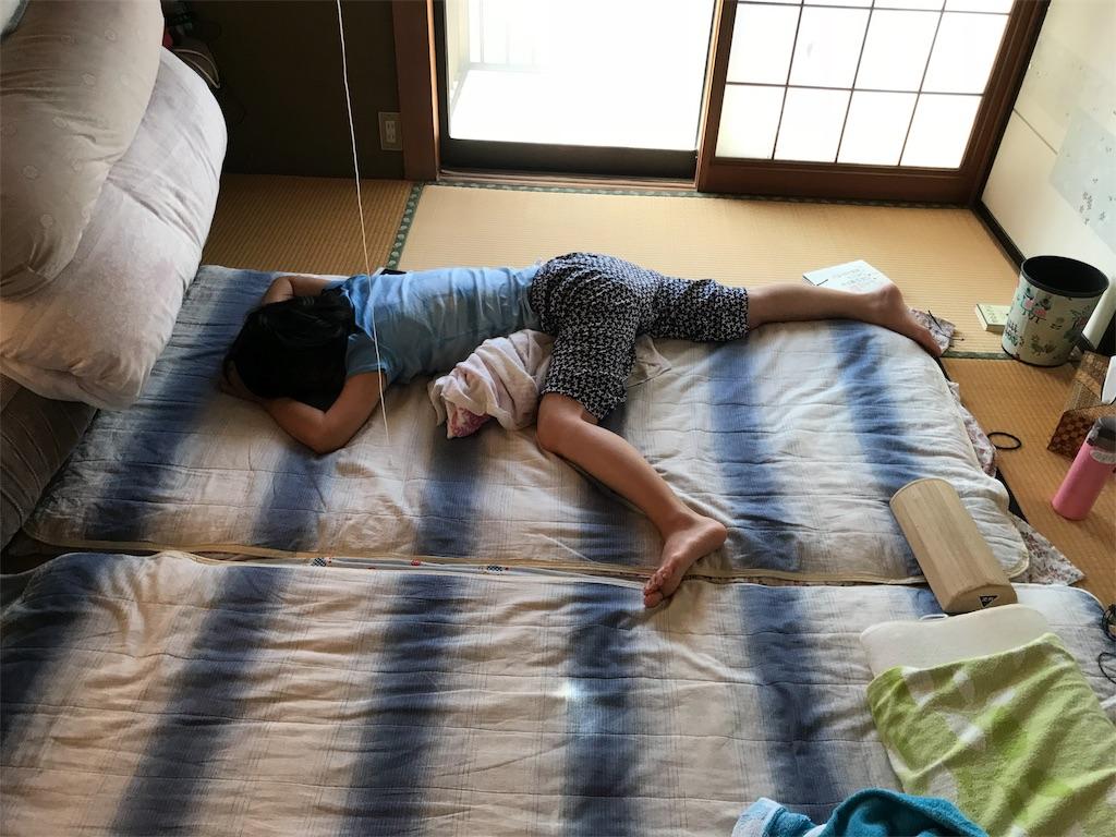 f:id:anzuruyori-umugayasushi421:20181207013209j:image