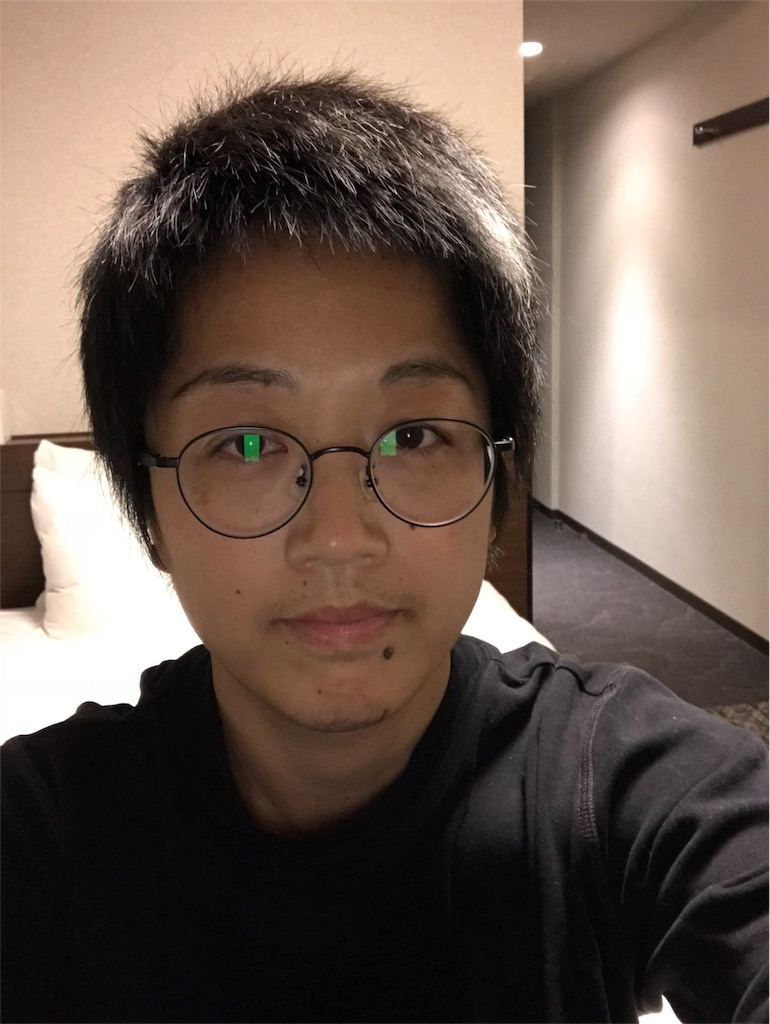 f:id:anzuruyori-umugayasushi421:20181217082439j:image