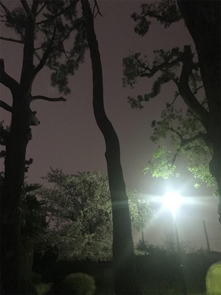 f:id:anzuruyori-umugayasushi421:20200331200559j:image
