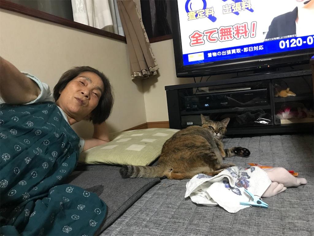 f:id:anzuruyori-umugayasushi421:20210910182927j:image