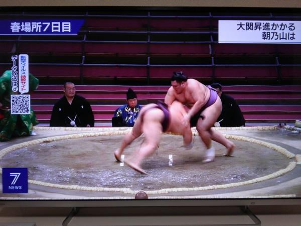 無観客大相撲のテレビ中継の写真