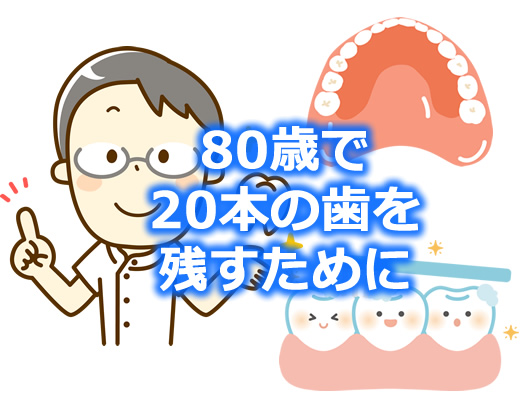 80歳で20本の歯を残すイラスト