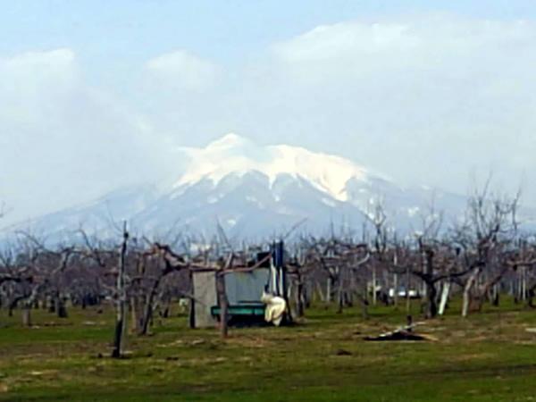 2020年3月22日(昨日)の岩木山の写真