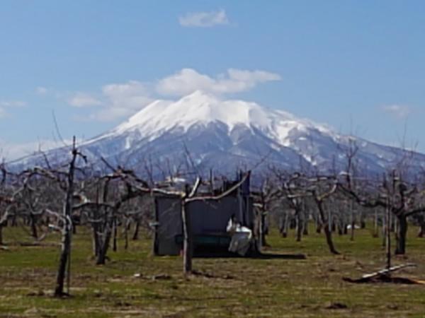 2020年3月25日の岩木山の写真