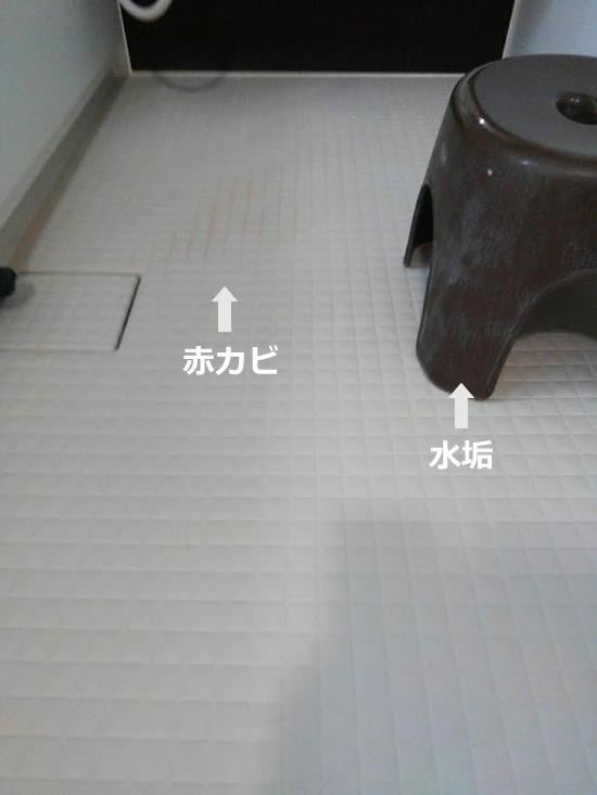 風呂の床の赤カビと風呂椅子の水垢の写真