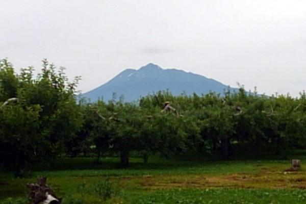 2020年6月30日の岩木山の写真
