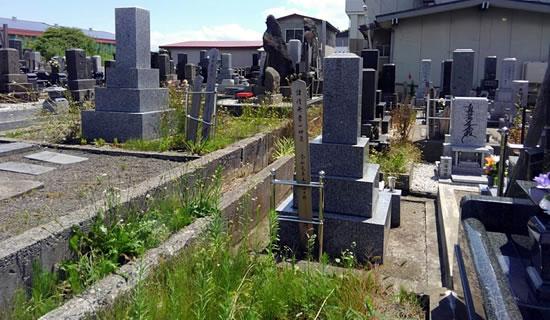 雑草が茂るお墓の写真