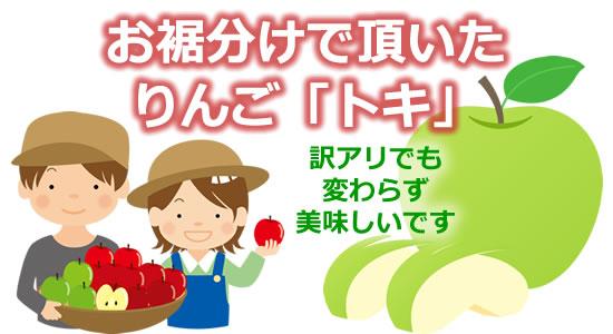 お裾分けで頂いたリンゴ「トキ」 訳アリでも変わらず美味しいのタイトル画像