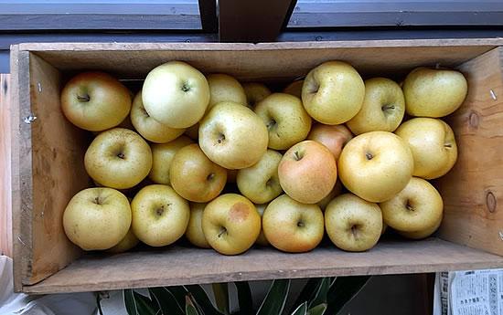 木箱で頂いたリンゴ「トキ」の写真