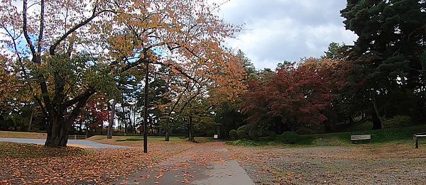 弘前城情報館横の紅葉の写真