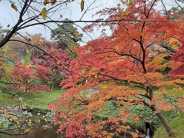 2020年弘前公園(弘前城)の紅葉写真_02