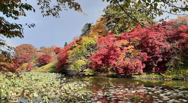 2020年弘前公園(弘前城)の紅葉写真_04