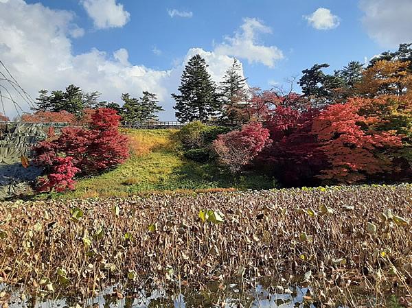 2020年弘前公園(弘前城)の紅葉写真_06