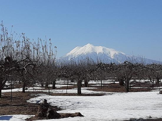 2021年3月15日の岩木山の写真