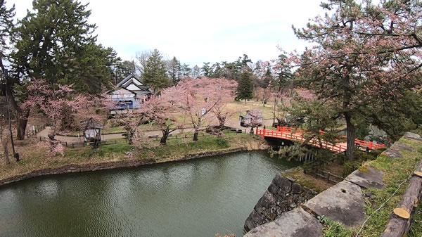弘前城北の郭の桜の写真