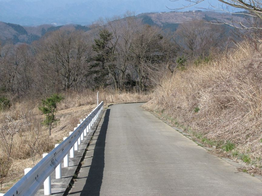 f:id:aobanozomi:20090405191942j:image:w150,left
