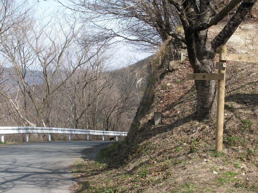 f:id:aobanozomi:20090405191946j:image:w150,left