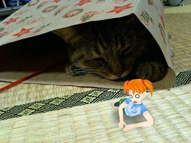 f:id:aobanozomi:20101124175217j:image:w360