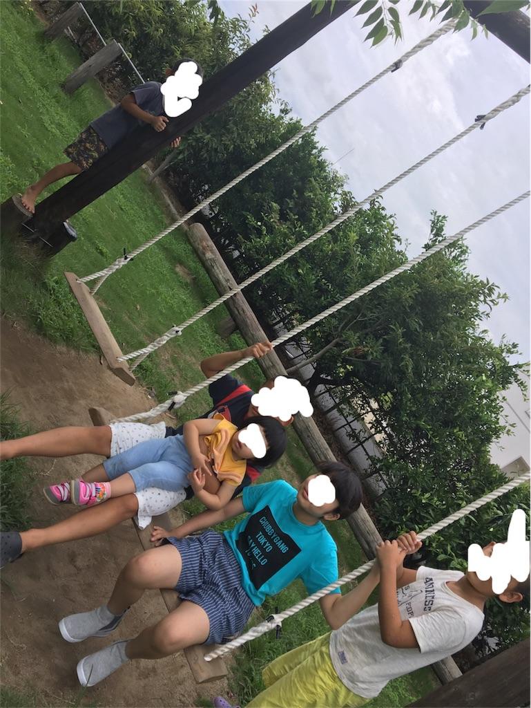 f:id:aohana:20170814234606j:image