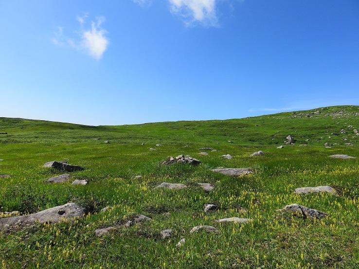 月山の肘折温泉ルートは一面草原
