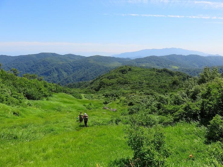 念仏ヶ原避難小屋への登山道の様子