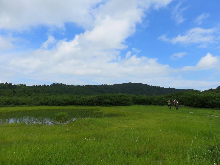念仏ヶ原の池塘