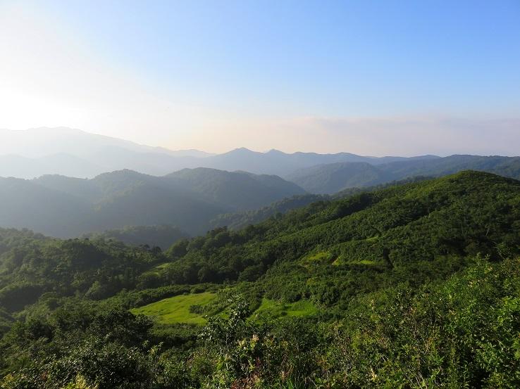 念仏ヶ原自然の宝庫