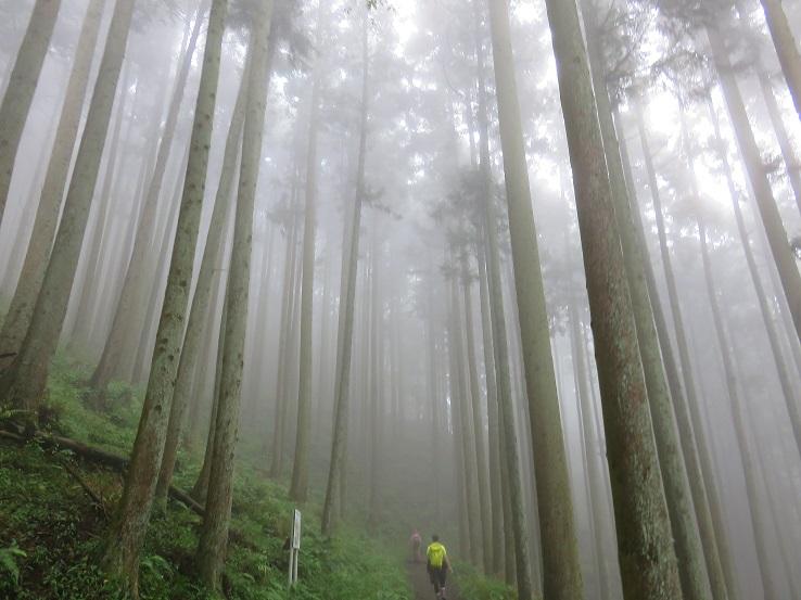 蛭ヶ岳へ登り始め