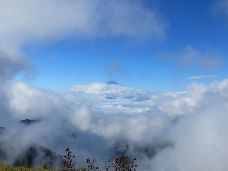 富士山まで続く雲海