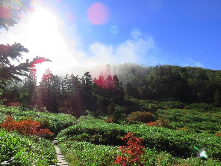 妙高山神秘的な景色