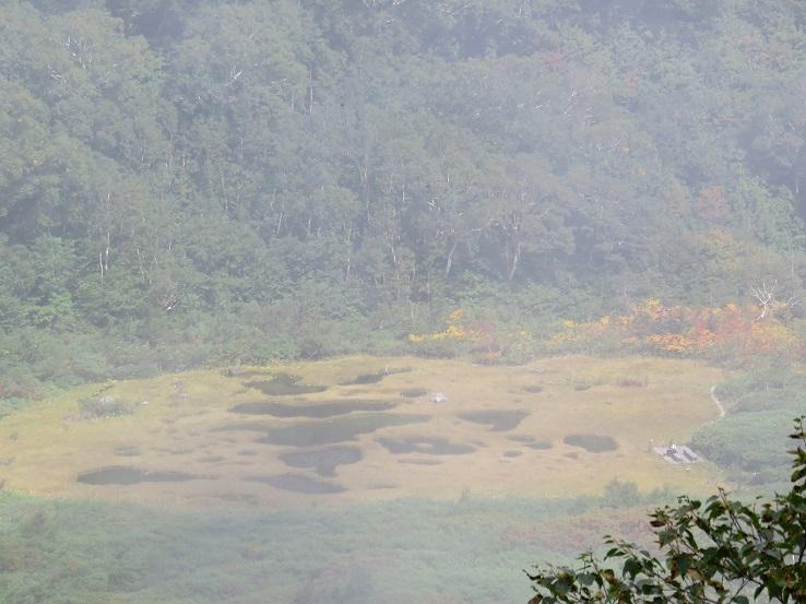 広い池塘地帯