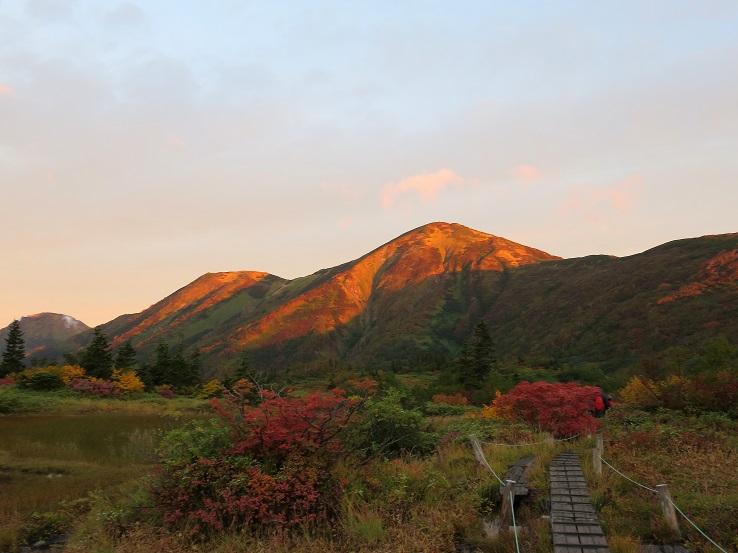 登山道周辺も雰囲気が良い