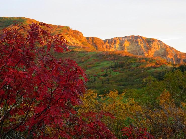 秋が美しい