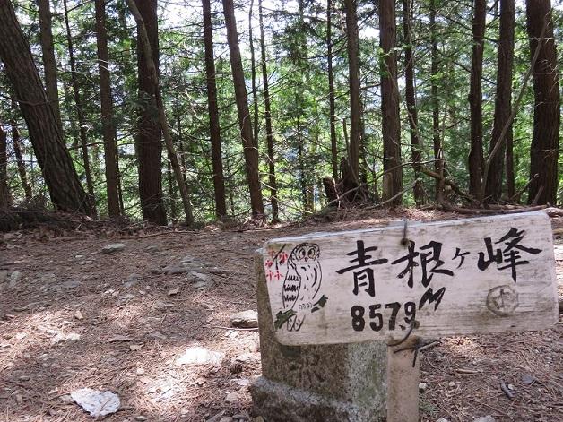 大峯奥駆道最初のピーク青根ヶ峰