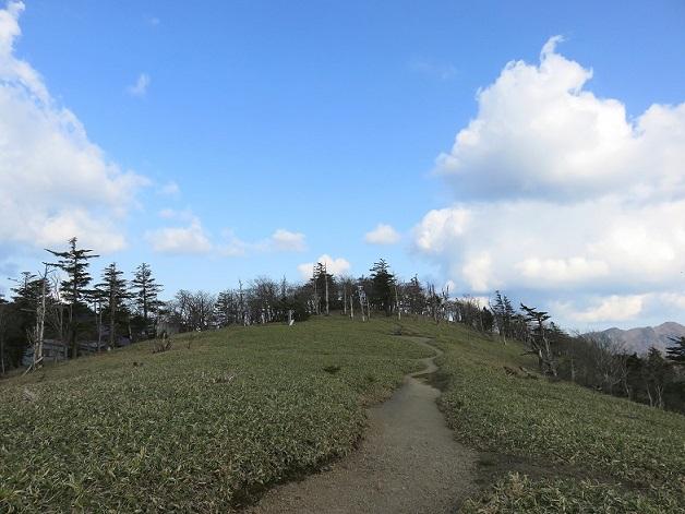 山上ヶ岳の山頂景色