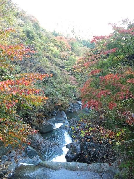 本間橋旧丹沢観光センター渓谷と紅葉